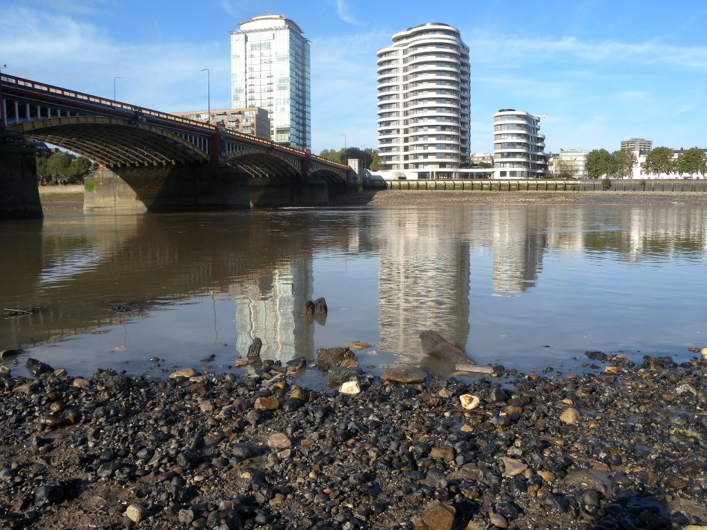 Mesolithic timbers downstream of Vauxhall Bridge. by N. Cohen © Thames Discovery Programme, All rights reserved