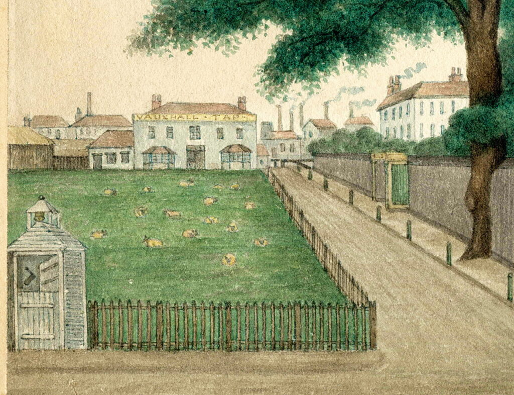 Detail of a colour watercolour showing green grass with sheep grazing, a lodge and int he distance houses and a pub, the Vauxhall Tap